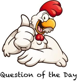 Chicken Question (2)