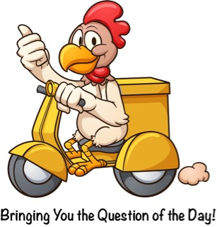 Chicken Scooter Question (2)