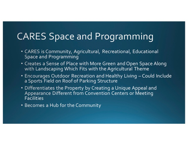 CARES_Community Master Plan Executive May 17 (1)